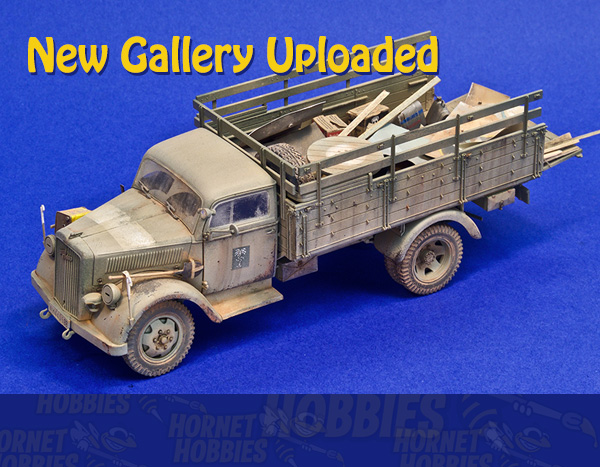 See the third gallery of your finished models on display at Hornet Hobbies